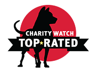 Children International meets the criteria for CharityWatch's top-rated charities.