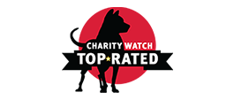 charitywatch top rated
