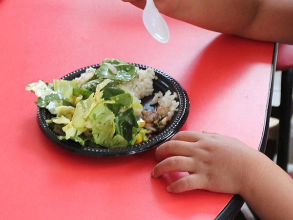 Primer plano de una ensalada de quinua y lechuga servida en un plato.