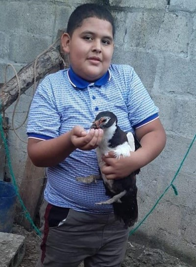 Help Fernando David by becoming a child sponsor. Sponsoring a child is a rewarding and heartwarming experience.