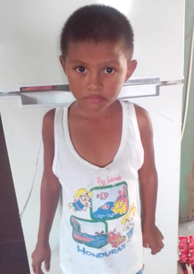 Help Josias Camilo by becoming a child sponsor. Sponsoring a child is a rewarding and heartwarming experience.
