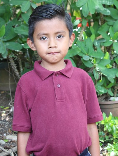 Help Helmy Neftaly by becoming a child sponsor. Sponsoring a child is a rewarding and heartwarming experience.